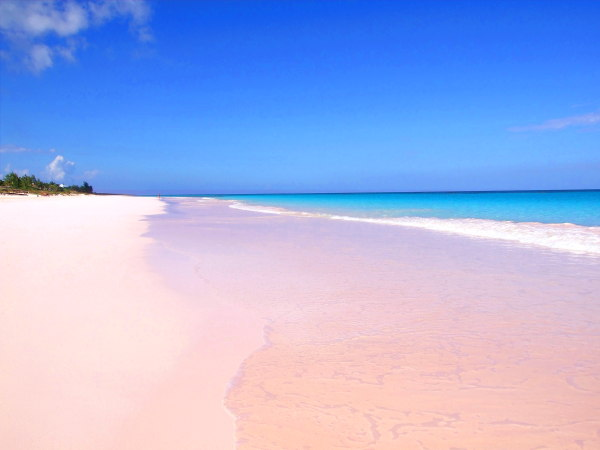 10 must see unique and unusual beaches around the world for Pink sand beaches bahamas